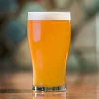 Beyond Thundercone Fresh Hop Mosaic Pale